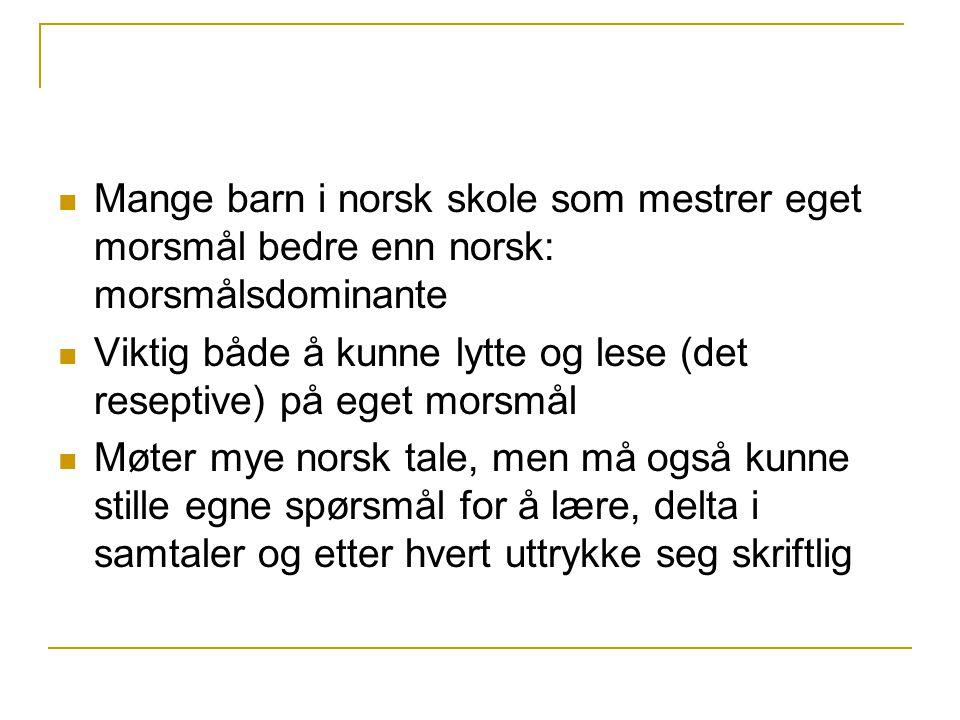 Mange barn i norsk skole som mestrer eget morsmål bedre enn norsk: morsmålsdominante