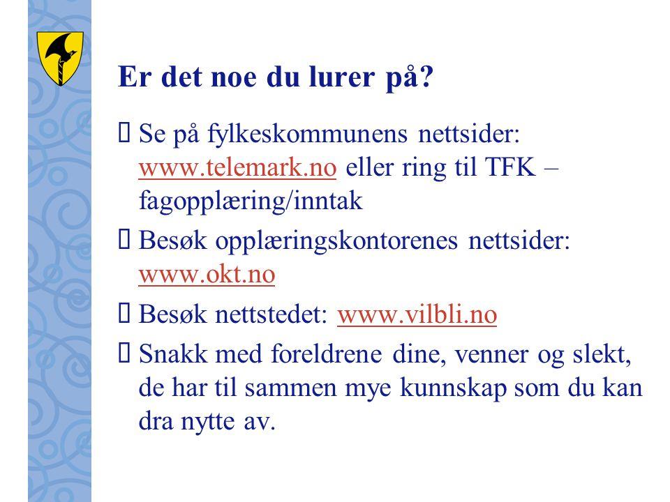 Er det noe du lurer på Se på fylkeskommunens nettsider: www.telemark.no eller ring til TFK – fagopplæring/inntak.