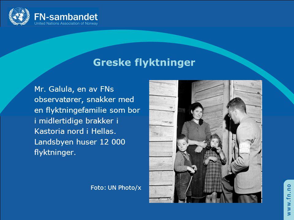 Greske flyktninger