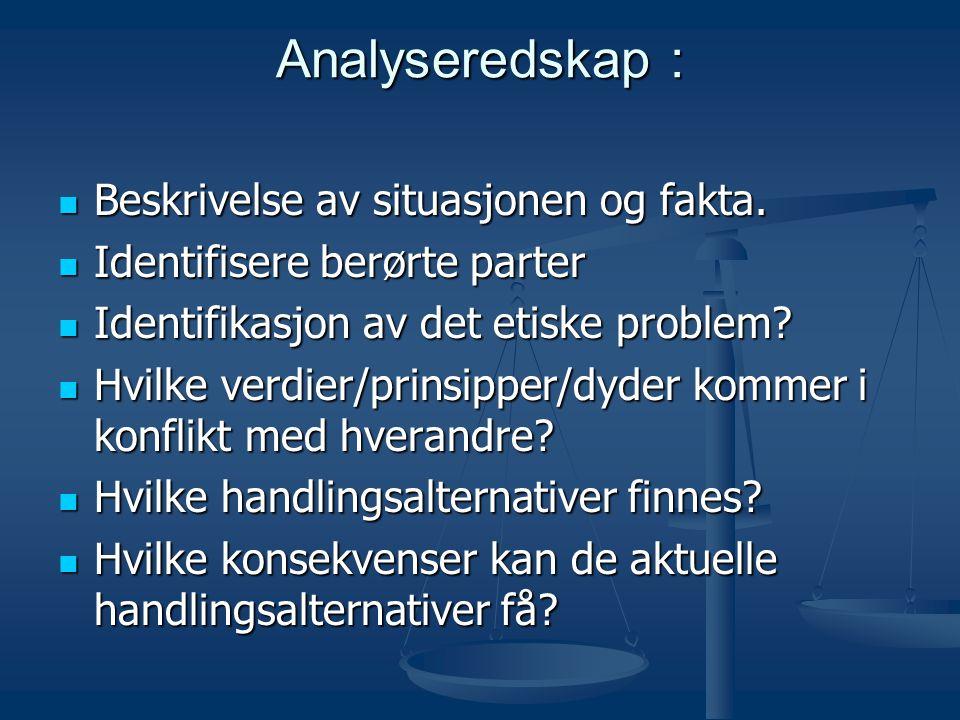 Analyseredskap : Beskrivelse av situasjonen og fakta.