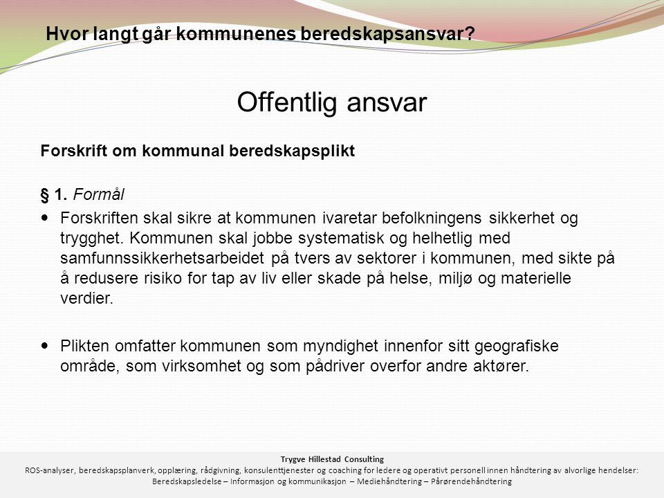 Trygve Hillestad Consulting