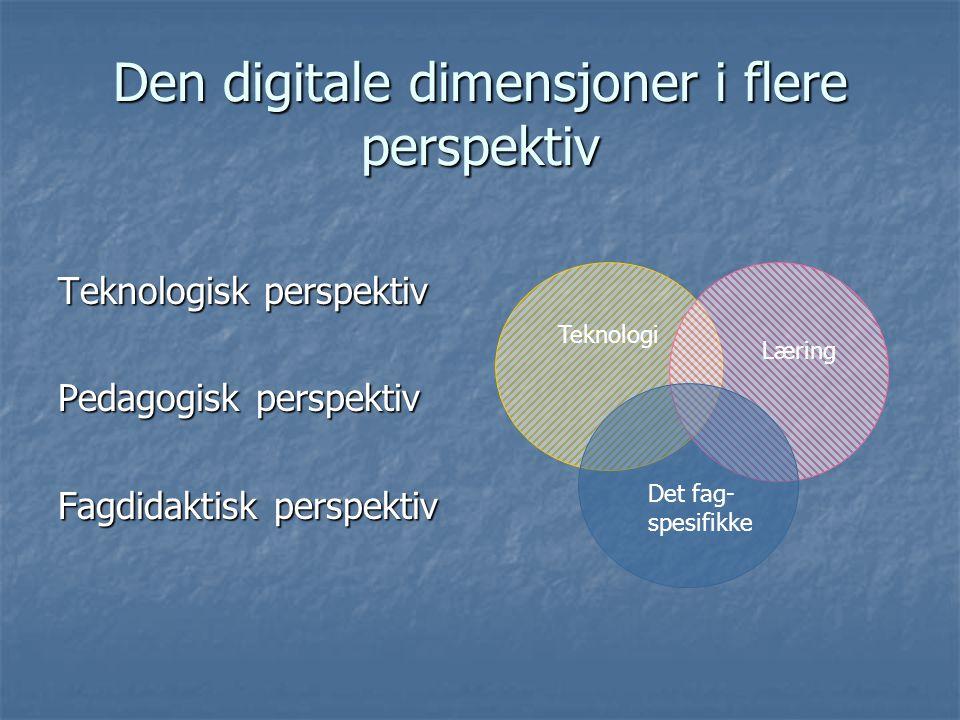 Den digitale dimensjoner i flere perspektiv
