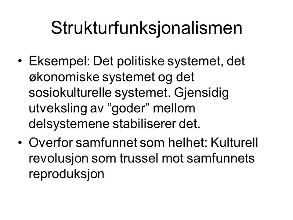 Strukturfunksjonalismen