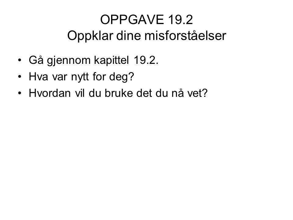OPPGAVE 19.2 Oppklar dine misforståelser