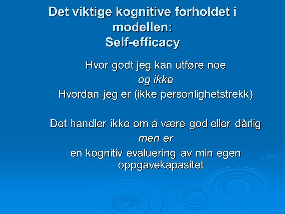 Det viktige kognitive forholdet i modellen: Self-efficacy