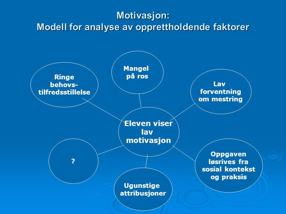Motivasjon: Modell for analyse av opprettholdende faktorer