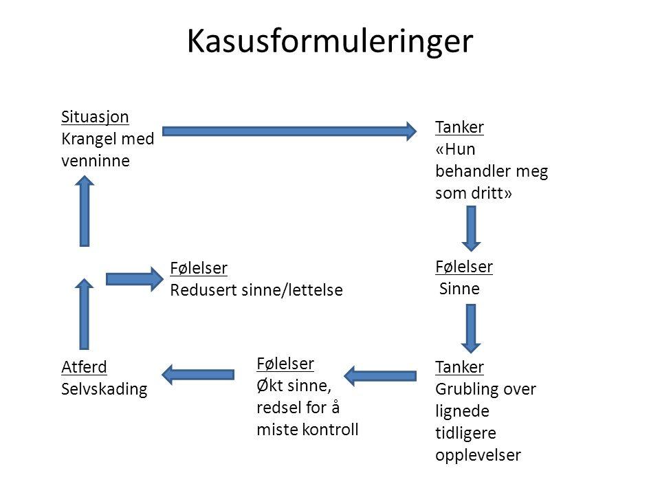 Kasusformuleringer Situasjon Krangel med venninne Tanker