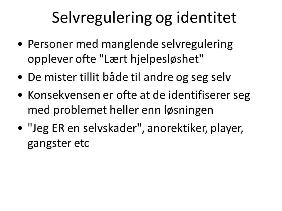 Selvregulering og identitet