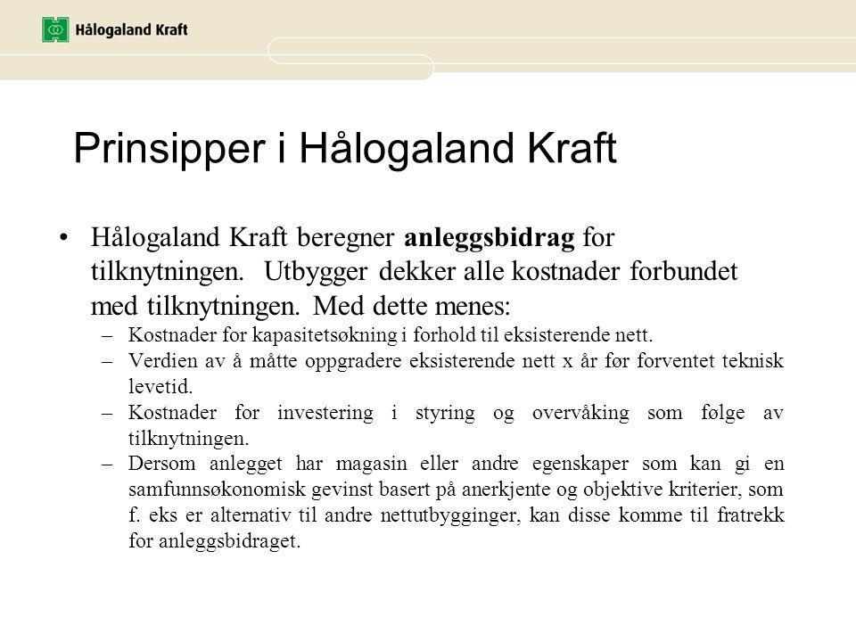 Prinsipper i Hålogaland Kraft