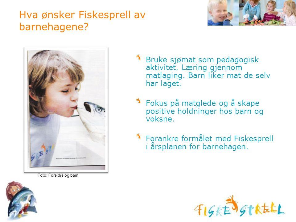 Hva ønsker Fiskesprell av barnehagene