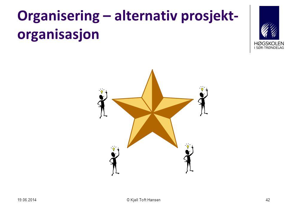 Organisering – alternativ prosjekt-organisasjon