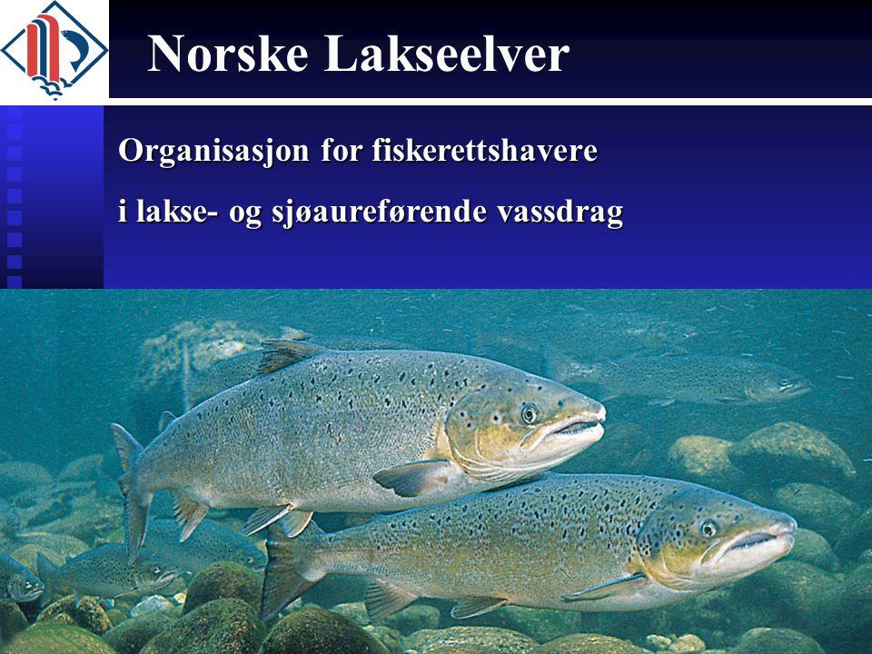 Norske Lakseelver Organisasjon for fiskerettshavere
