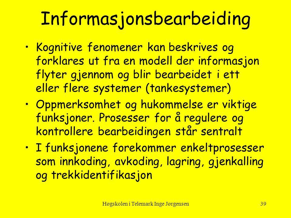 Informasjonsbearbeiding