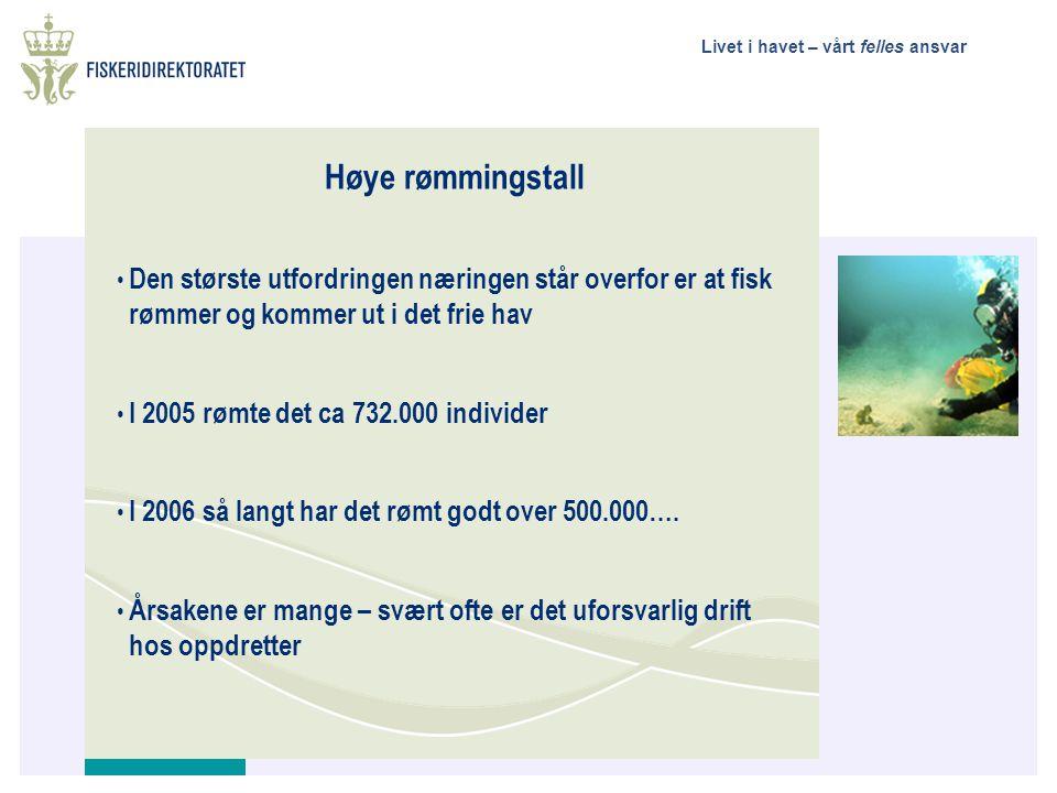 Høye rømmingstall Den største utfordringen næringen står overfor er at fisk rømmer og kommer ut i det frie hav.