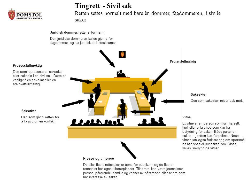 Tingrett - Sivil sak Retten settes normalt med bare èn dommer, fagdommeren, i sivile saker. Juridisk dommer/rettens formann.