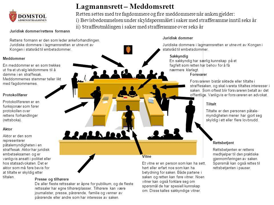 Lagmannsrett – Meddomsrett