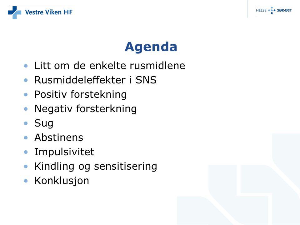 Agenda Litt om de enkelte rusmidlene Rusmiddeleffekter i SNS