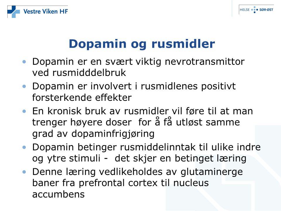 Dopamin og rusmidler Dopamin er en svært viktig nevrotransmittor ved rusmidddelbruk.