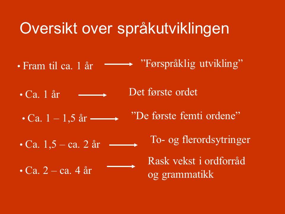 Oversikt over språkutviklingen
