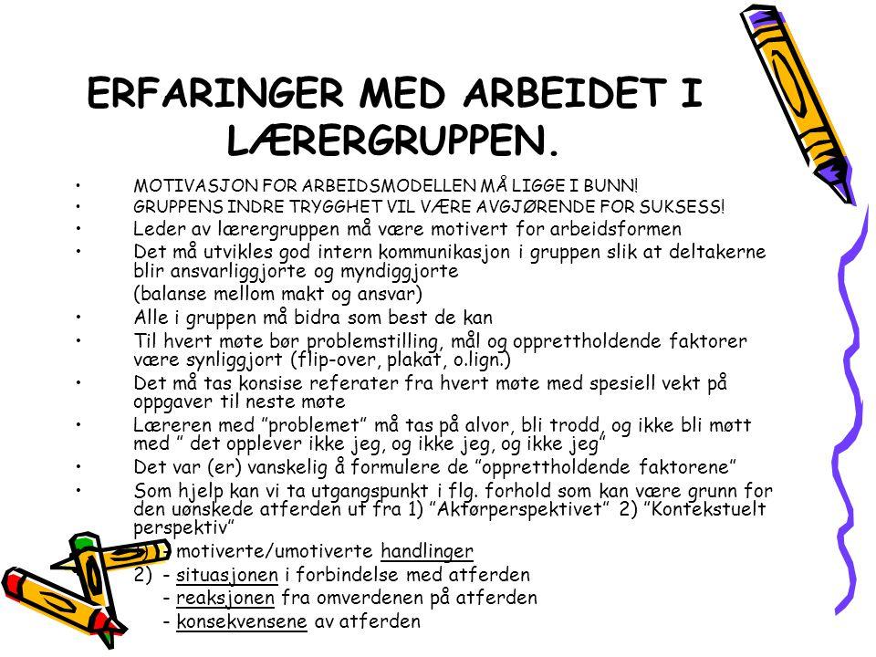 ERFARINGER MED ARBEIDET I LÆRERGRUPPEN.