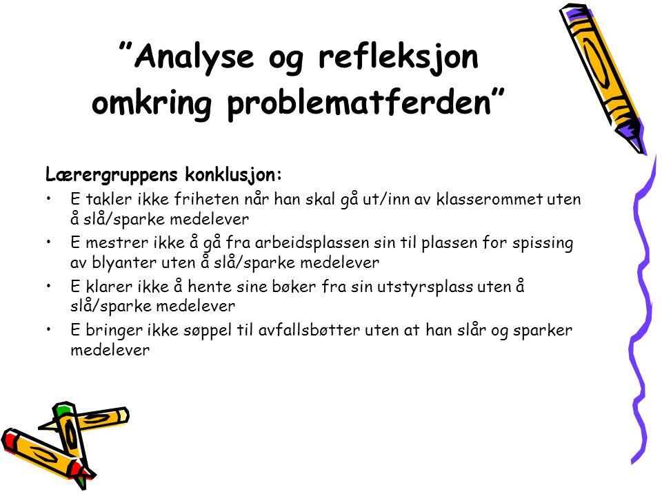 Analyse og refleksjon omkring problematferden