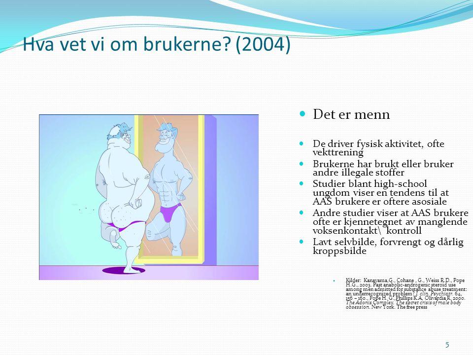 Hva vet vi om brukerne (2004)