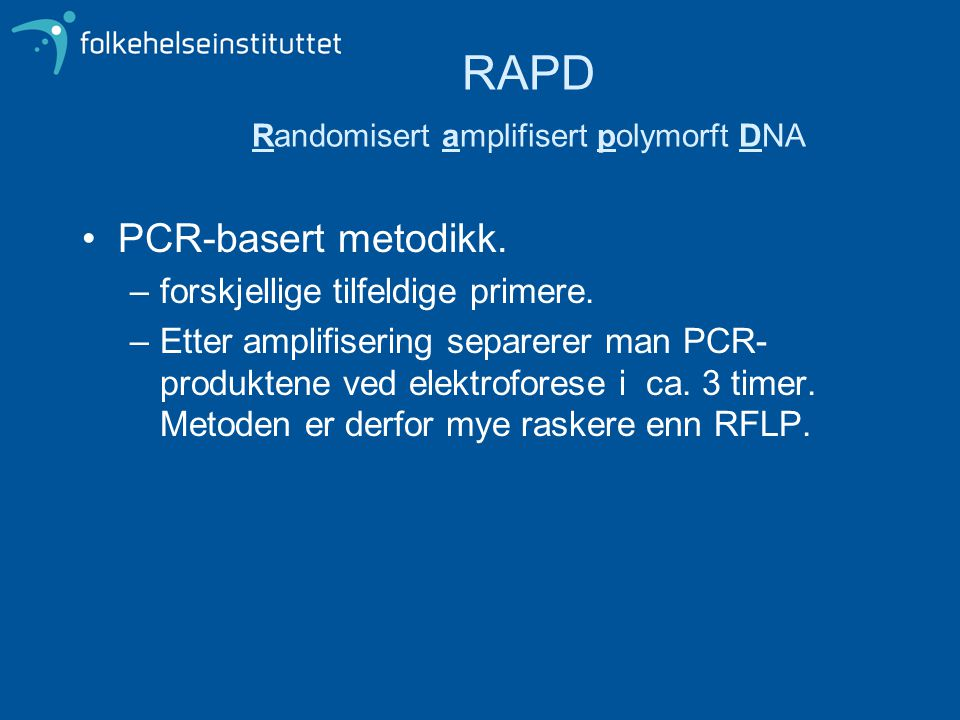RAPD Randomisert amplifisert polymorft DNA