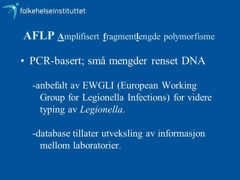 AFLP Amplifisert fragmentlengde polymorfisme