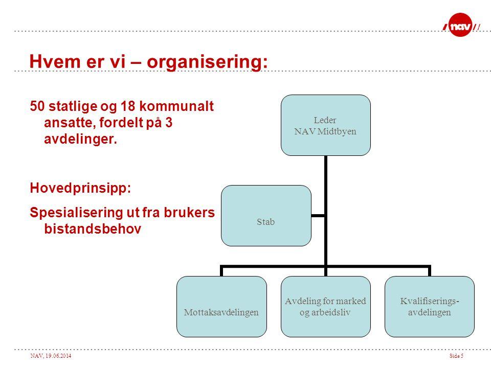 Hvem er vi – organisering: