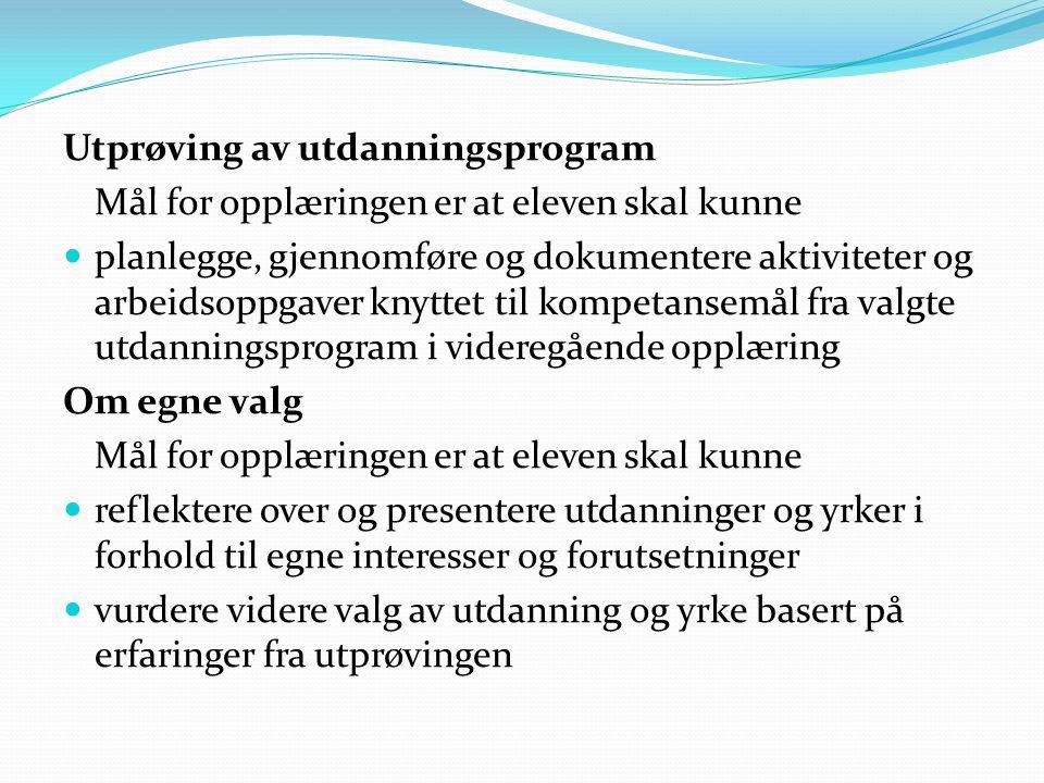 Utprøving av utdanningsprogram