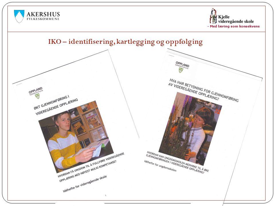 IKO – identifisering, kartlegging og oppfølging