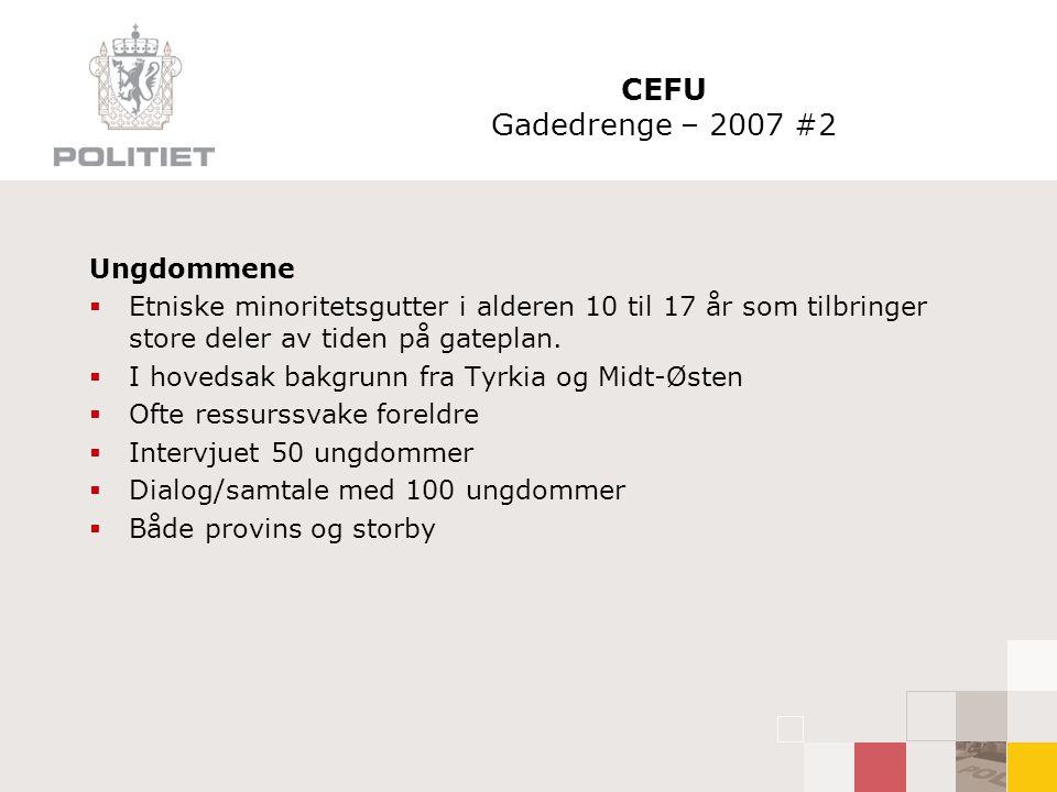 CEFU Gadedrenge – 2007 #2 Ungdommene