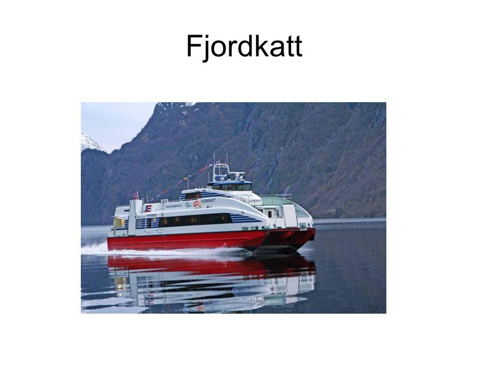 Fjordkatt