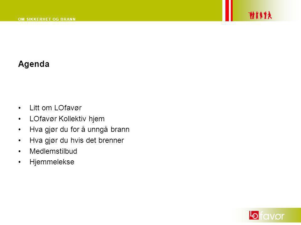 Agenda Litt om LOfavør LOfavør Kollektiv hjem