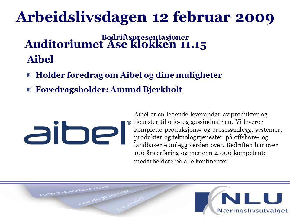 Arbeidslivsdagen 12 februar 2009 Bedriftspresentasjoner