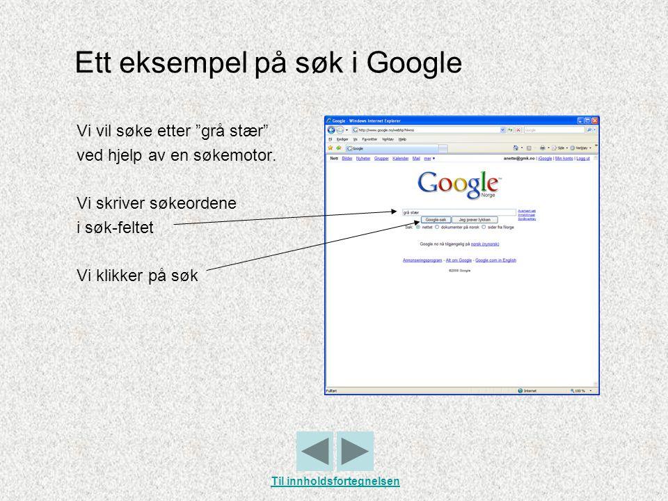Ett eksempel på søk i Google