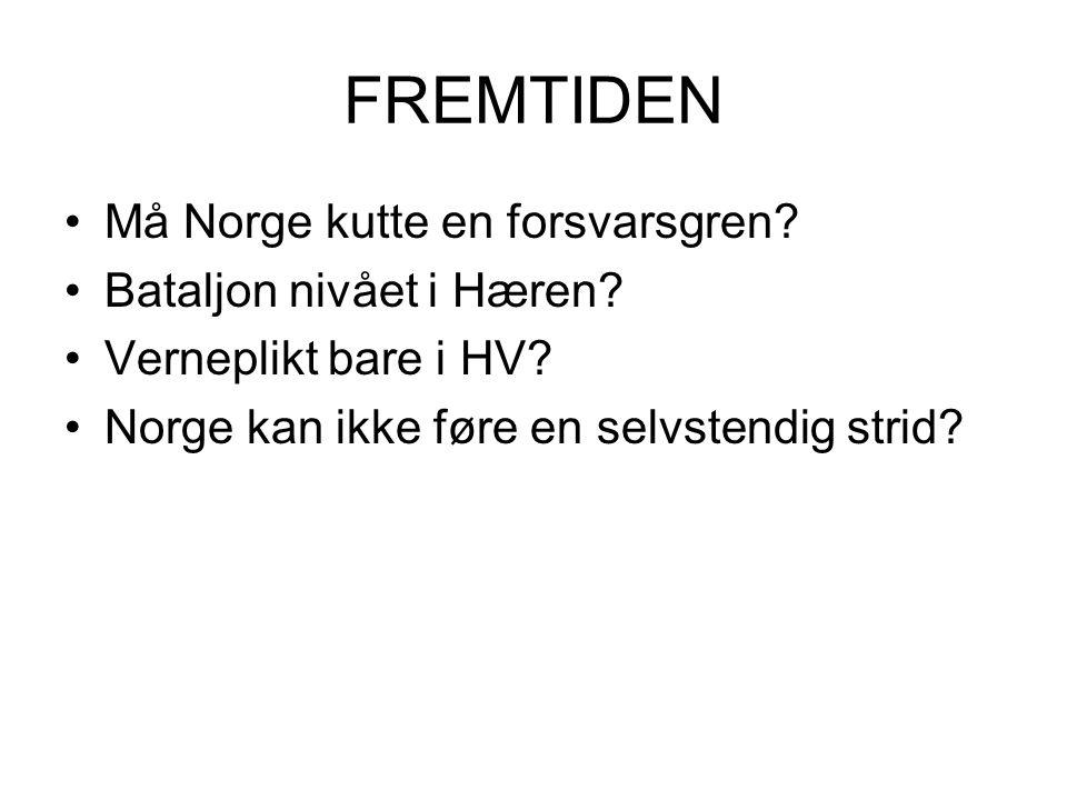 FREMTIDEN Må Norge kutte en forsvarsgren Bataljon nivået i Hæren