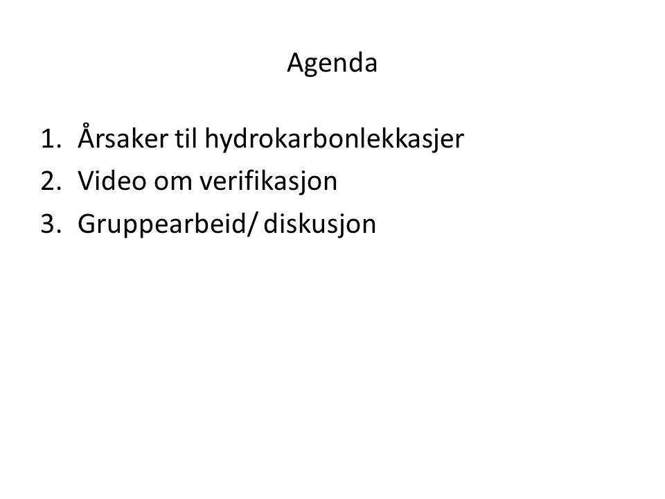 Agenda Årsaker til hydrokarbonlekkasjer Video om verifikasjon Gruppearbeid/ diskusjon