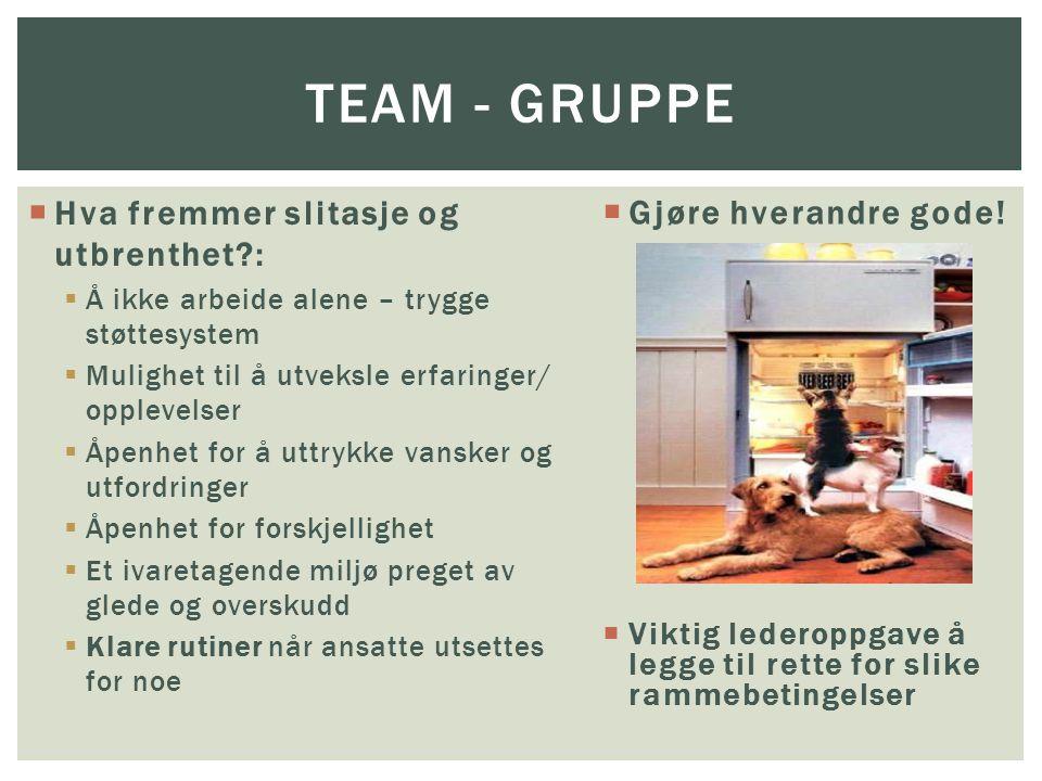 Team - gruppe Hva fremmer slitasje og utbrenthet :