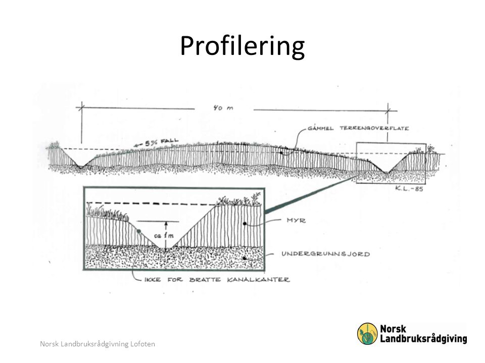 Norsk Landbruksrådgivning Lofoten