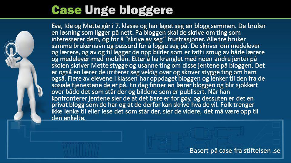 Case Unge bloggere Basert på case fra stiftelsen .se