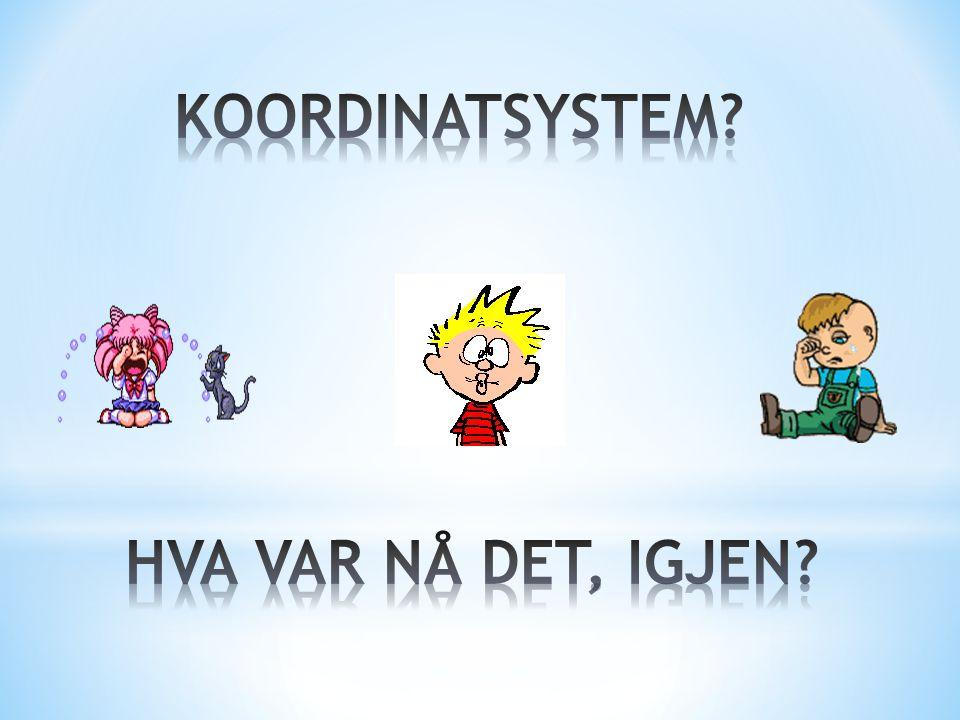 KOORDINATSYSTEM HVA VAR NÅ DET, IGJEN