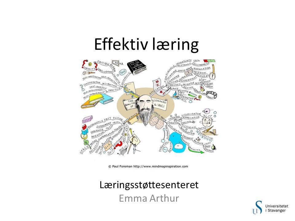 Læringsstøttesenteret Emma Arthur