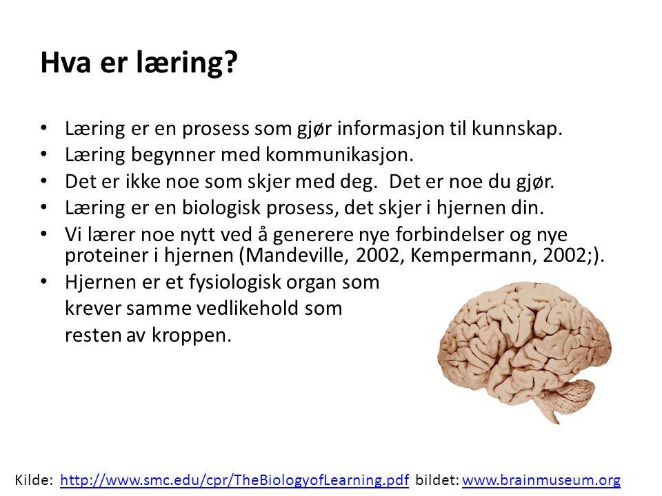 Hva er læring Læring er en prosess som gjør informasjon til kunnskap.