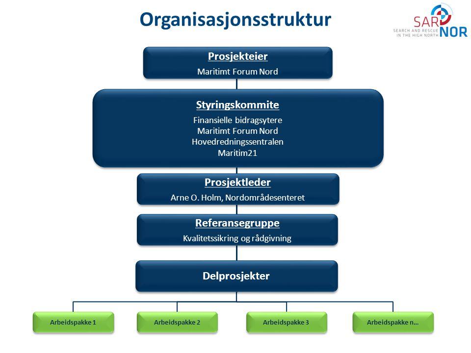 Organisasjonsstruktur