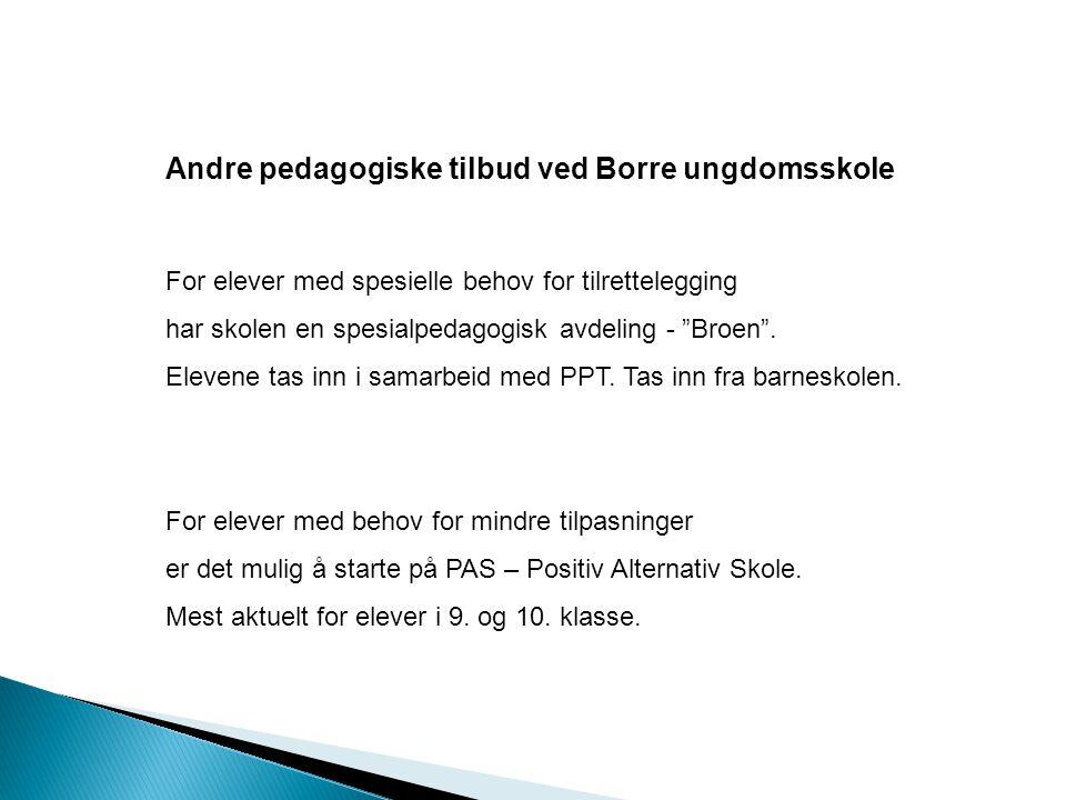 Andre pedagogiske tilbud ved Borre ungdomsskole