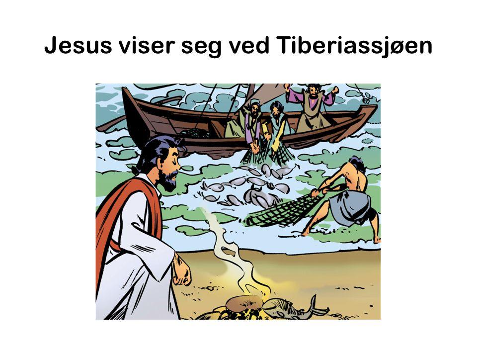 Jesus viser seg ved Tiberiassjøen