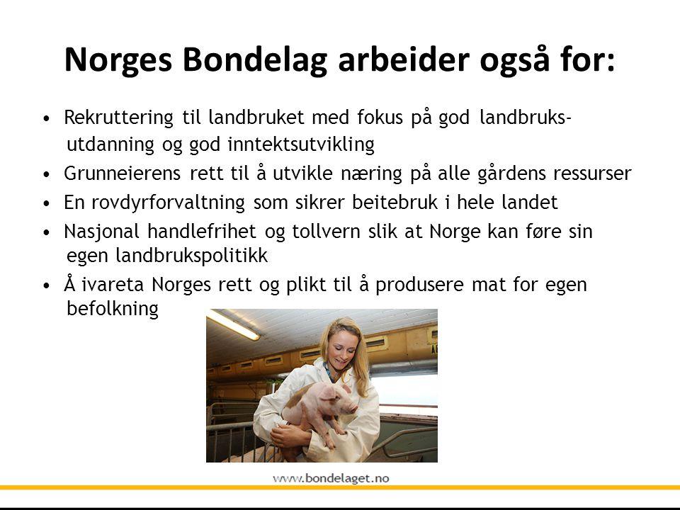 Norges Bondelag arbeider også for: