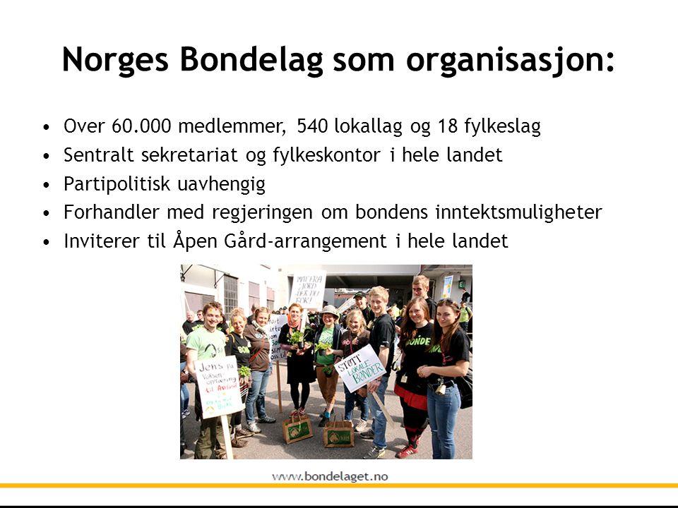 Norges Bondelag som organisasjon: