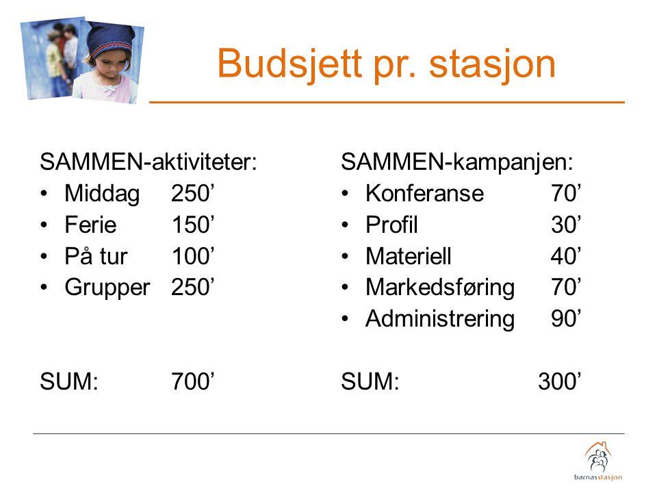 Budsjett pr. stasjon SAMMEN-aktiviteter: Middag 250' Ferie 150'